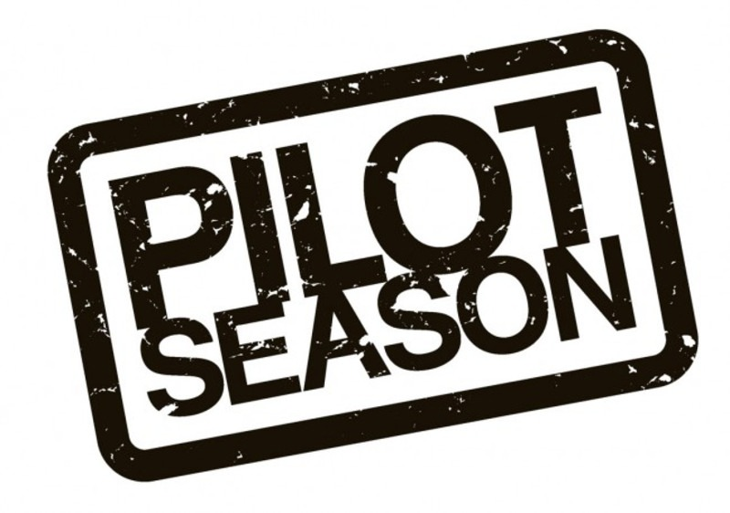 Lizza Monet Morales' photo Eek, I can't believe Pilot Season is here already! I'm working on a story and need your help.</p><br /><br /><br /> <p>I'm curious,  actors what's your plan?  What are you planning on doing different or what tips can you share? </p><br /><br /><br /> <p>Casting Directors, what are the 5 Do's or Don'ts actors should know about auditioning for a pilot?</p><br /><br /><br /> <p>Agents and Managers, what are the 5 things a client can do to set their best foot forward in 2012? Are there any things you wish they would stop doing? </p><br /><br /><br /> <p>*Feel free to SHARE but please include #PilotSeasonChat when reposting anywhere in your social networks so it makes it easier for me to track. :) </p><br /><br /><br /> <p>xx