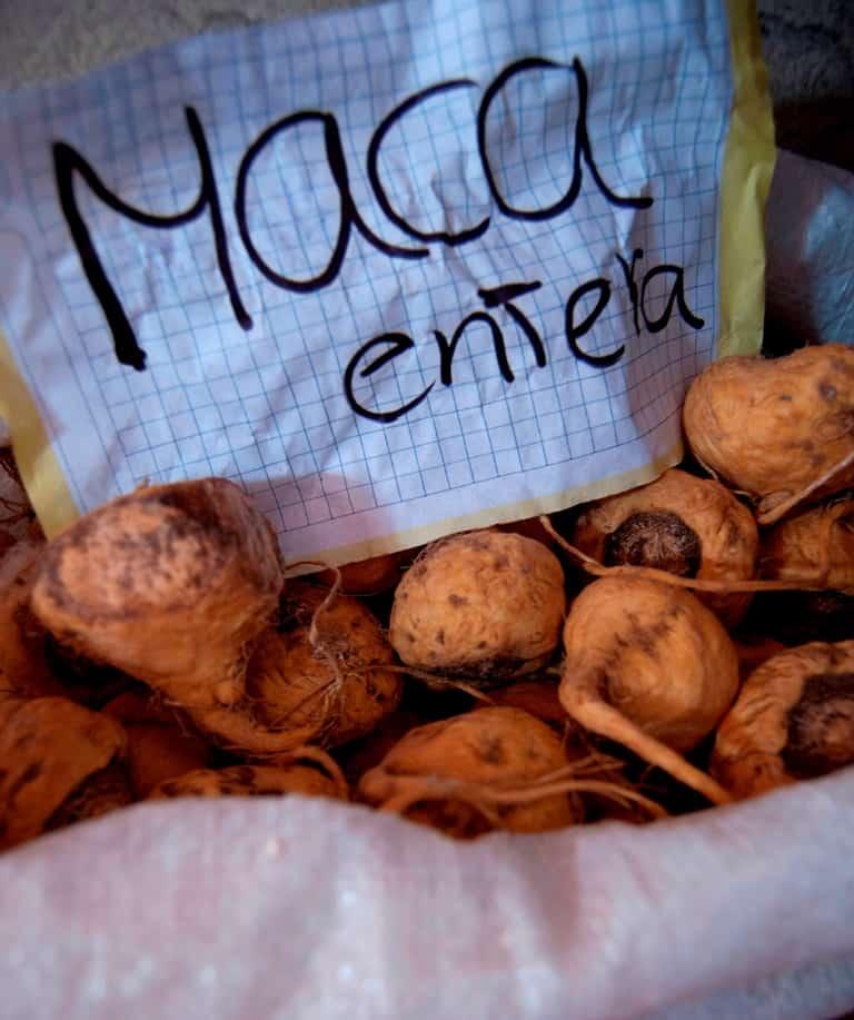 Maca_FM_02